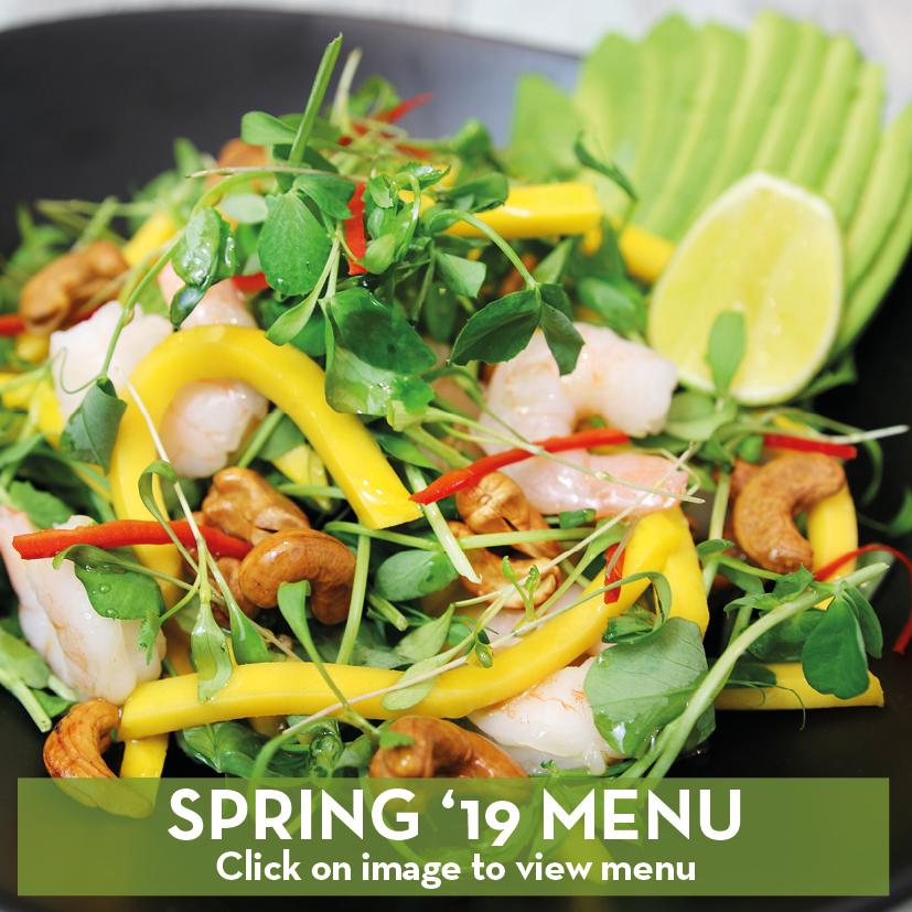 spring-19-menu-buttons